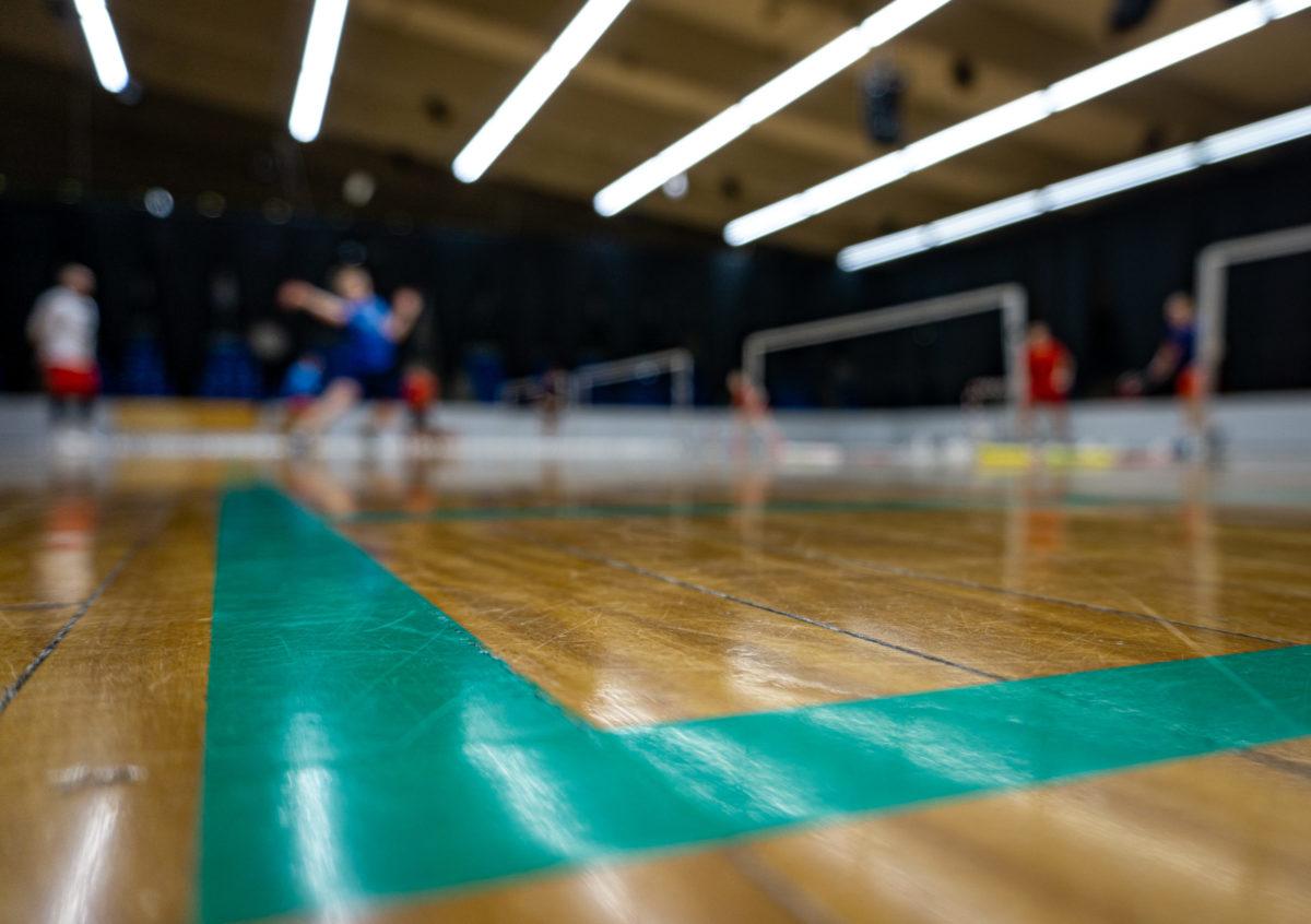 Det Nationale Elite Træningscenter - NETC - Brøndby - elitebadminton - udvikling - glæde - verdensklassespillere